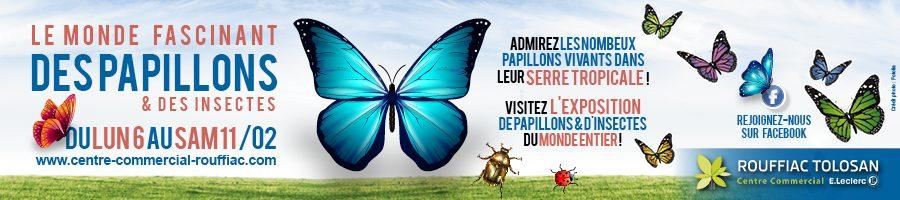 expo papillons leclerc rouffiac février