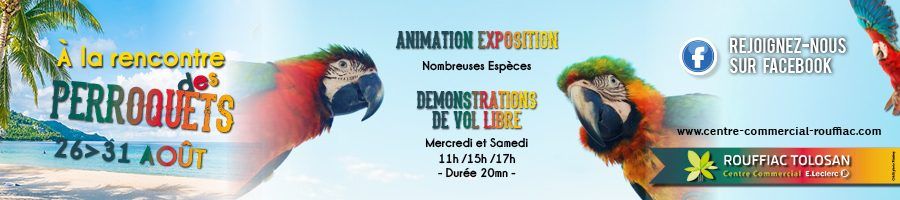 animation aout perroquets centre Leclerc Rouffiac Toulouse